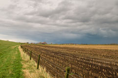 Traditional Dutch landscape with dike and heavy clouds. Field of corn that is harvested Royalty Free Stock Photography