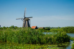 Traditional dutch windmill in famous Kinderdijk, The Netherlands Royalty Free Stock Photos
