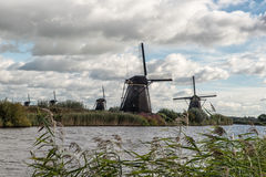 Traditional dutch windmills Royalty Free Stock Photo