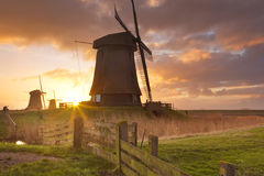 Traditional Dutch windmills at sunrise Stock Photography