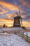 Traditional Dutch windmills in winter at sunrise Stock Image