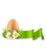 Traditional Easter egg with flowers daisy, grass and ribbon Royalty Free Stock Photo