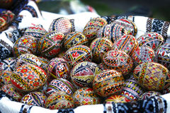 Traditional Easter eggs. Traditional Romanian Easter eggs, hand-painted with geometrical motifs Royalty Free Stock Images