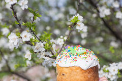Easter sweet bread and painted eggs Royalty Free Stock Images