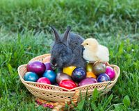 Traditional Easter Stock Images