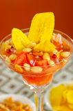 Traditional ecuadorian cold tomato based dish with chochos, onions and banana chips, elegant restaurant presentation.  Stock Photography