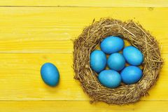 Traditional eggs painted in blue color inside woven straw wreath stock photos