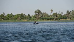 Traditional egyptian bedouin fisherman on river by reeds stock video
