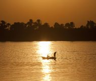 Traditional egyptian fisherman at sunset Royalty Free Stock Image