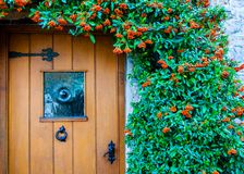 Traditional English front door Royalty Free Stock Photo