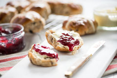 Traditional english scones Stock Images