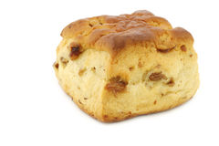 Traditional english scones with raisins Royalty Free Stock Photography