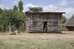 Traditional Ethiopian house. Royalty Free Stock Photo