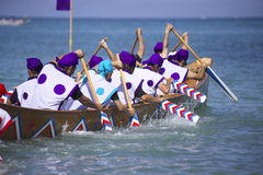 Traditional event in Okinawa Meijo Harleigh Royalty Free Stock Photos