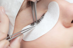 Traditional eyelash extensions. Selective focus. Toned. Makeup close-up. Royalty Free Stock Photography