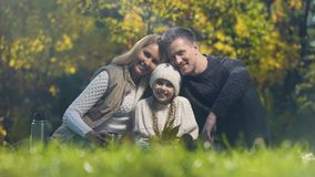 Traditional family on picnic in park smiling and looking at camera, insurance. Stock footage stock video footage