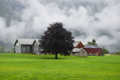 Traditional farm house and barn in Norway. Royalty Free Stock Image
