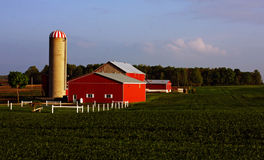 Traditional Farm with Silo Royalty Free Stock Image