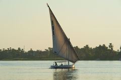 Traditional felluca on River Nile Royalty Free Stock Image