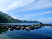 Traditional fish cage in Lake Toba. The traditional fish cage nearby Lake Toba Royalty Free Stock Photo