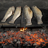 Traditional fish grilling, skewed on wood, barbecue. Traditional fish grilling, fish skewed on wood, barbecue, France Royalty Free Stock Images