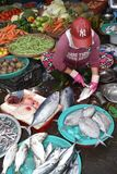 Traditional Fish market in Hoi An, Vietnam, Asia stock photography