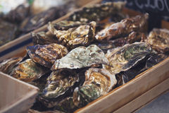 Traditional fish market Stock Photography