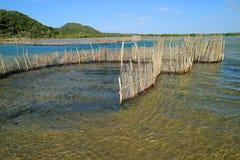 Free Traditional Fish Trap - Kosi Bay Royalty Free Stock Images - 123841799
