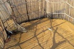 Traditional fish trap - Kosi Bay Stock Photography