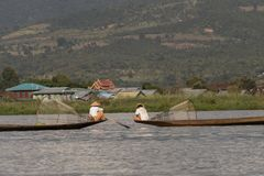 Traditional fisherman of Inle Lake. Fisherman in traditional costume fishing in balance, with a net, in a typical Inle lake canoe. Myanmar royalty free stock photo