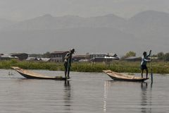 Traditional fisherman of Inle Lake. Fisherman in traditional costume fishing in balance, with a net, in a typical Inle lake canoe. Myanmar stock image