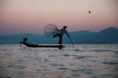 Traditional fisherman on the Inle Lake in Myanmar royalty free stock photography