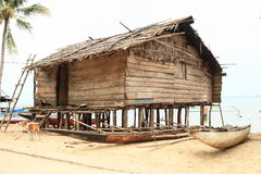 Traditional fishers house. Made from wood on pillars with boats and dog in Indonesian village - Papua Barat, Indonesia Stock Photos