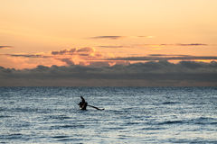Traditional fishing boat with fisherman at sunrise Royalty Free Stock Images