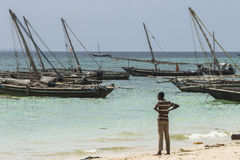 Traditional fishing boats on beach stock image