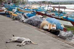 Traditional fishing boats at Jimbaran Beach Royalty Free Stock Images