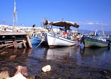 Traditional fishing boats in Latchi harbour. Stock Image