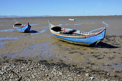 Traditional fishing boats on Tagus river Royalty Free Stock Image