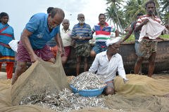 Traditional fishing Royalty Free Stock Photo