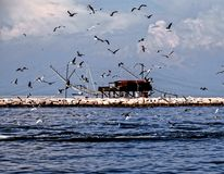 Traditional Fishing House. Traditional Fishing Europen House near Venice in Italy stock photos