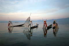 Traditional fishing by net in Inle Lake,Myanmar. Royalty Free Stock Images