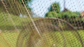 Dutch fishing nets 1. Traditional fishing nets hung for inspection Royalty Free Stock Photos