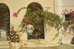 Traditional Flowers Ionian see  coast area Royalty Free Stock Image