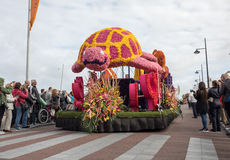 The traditional flowers parade Bloemencorso from Noordwijk to Haarlem in the Netherlands. Royalty Free Stock Photos
