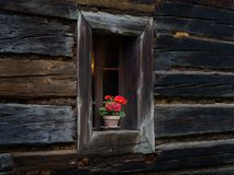 Windows of an old wooden house royalty free stock photos