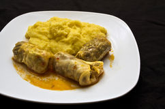 Traditional food. Traditional Romanian food, cabbage leaf stuffed cabbage leaves in hot polenta,Contains minced meat and rice royalty free stock images