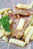 Traditional food fish and chips Stock Image