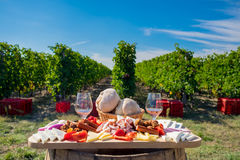 Traditional food plate with wine and vineyards in the background Stock Photo