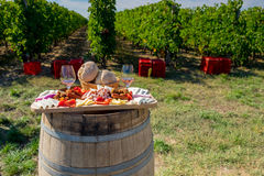 Traditional food plate with wine and vineyards in the background. Cheese, bread, sausages,  onions and red wine in glass Royalty Free Stock Photos