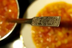 Traditional food. The spoon in the traditional food Royalty Free Stock Photos